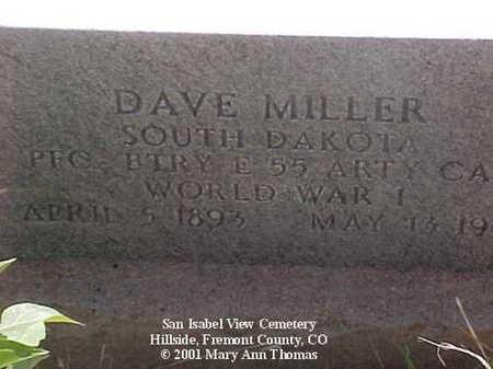 MILLER, DAVE - Fremont County, Colorado | DAVE MILLER - Colorado Gravestone Photos