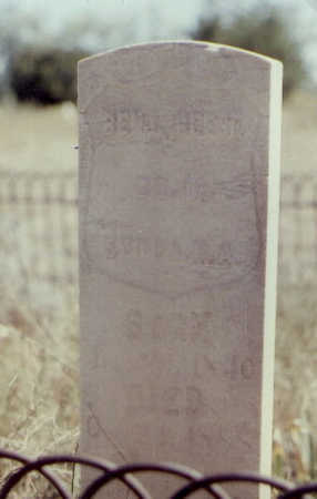 REESE, BENJ. - Fremont County, Colorado | BENJ. REESE - Colorado Gravestone Photos