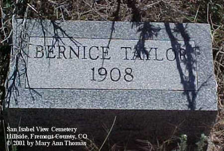TAYLOR, BERNICE - Fremont County, Colorado | BERNICE TAYLOR - Colorado Gravestone Photos