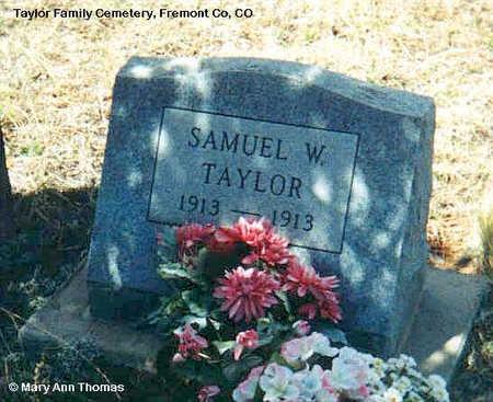 TAYLOR, SAMUEL W. - Fremont County, Colorado | SAMUEL W. TAYLOR - Colorado Gravestone Photos