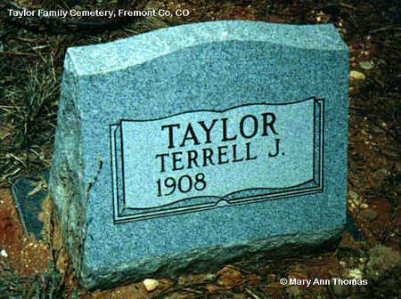 TAYLOR, TERRELL J. - Fremont County, Colorado | TERRELL J. TAYLOR - Colorado Gravestone Photos