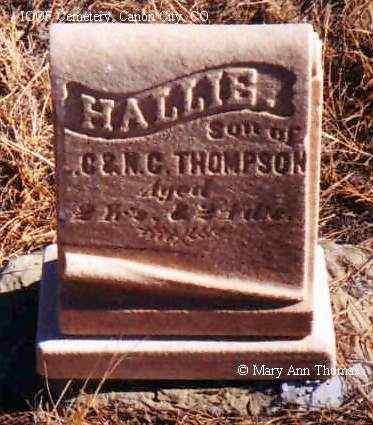 THOMPSON, HALLIS - Fremont County, Colorado   HALLIS THOMPSON - Colorado Gravestone Photos