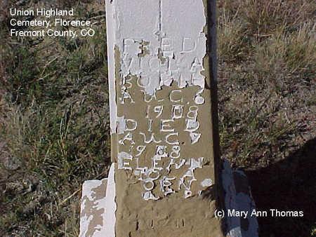 VIOLA, ELE?N - Fremont County, Colorado | ELE?N VIOLA - Colorado Gravestone Photos