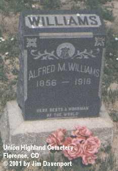WILLIAMS, ALFRED M. - Fremont County, Colorado | ALFRED M. WILLIAMS - Colorado Gravestone Photos