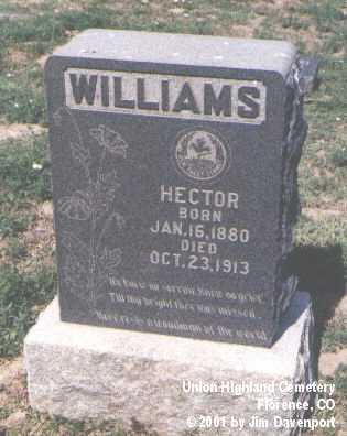 WILLIAMS, HECTOR - Fremont County, Colorado | HECTOR WILLIAMS - Colorado Gravestone Photos