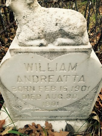 ANDREATTA, WILLIAM - Garfield County, Colorado | WILLIAM ANDREATTA - Colorado Gravestone Photos