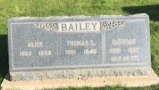 BAILEY, D BIVIAN - Garfield County, Colorado | D BIVIAN BAILEY - Colorado Gravestone Photos