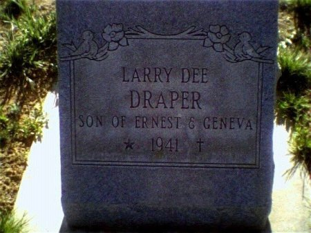 DRAPER, LARRY DEE - Garfield County, Colorado | LARRY DEE DRAPER - Colorado Gravestone Photos
