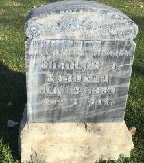 GARDNER, CHARLES A - Garfield County, Colorado   CHARLES A GARDNER - Colorado Gravestone Photos