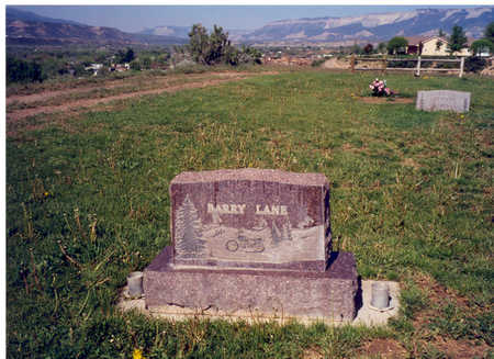 LANE, BARRY - Garfield County, Colorado | BARRY LANE - Colorado Gravestone Photos