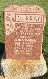MURRAY, ELIZABETH YEO - Garfield County, Colorado | ELIZABETH YEO MURRAY - Colorado Gravestone Photos
