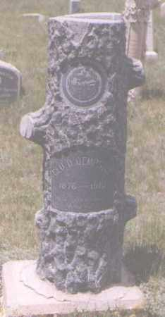 DEMPSTER, GEORGE D. - Gilpin County, Colorado | GEORGE D. DEMPSTER - Colorado Gravestone Photos