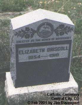 DRISCOLL, ELIZABETH - Gilpin County, Colorado   ELIZABETH DRISCOLL - Colorado Gravestone Photos
