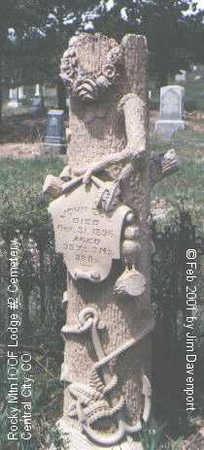 EDE, JOHN - Gilpin County, Colorado   JOHN EDE - Colorado Gravestone Photos