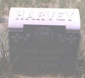 HARVEY, JAMES H. - Gilpin County, Colorado | JAMES H. HARVEY - Colorado Gravestone Photos