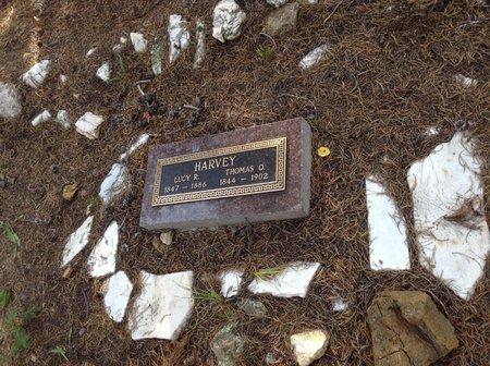 THOMAS O., HARVEY - Gilpin County, Colorado   HARVEY THOMAS O. - Colorado Gravestone Photos