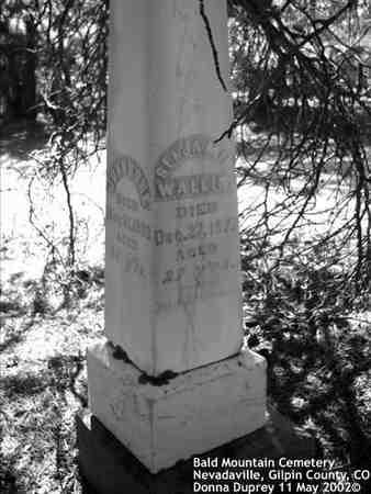 WALLIS, BENJAMIN - Gilpin County, Colorado | BENJAMIN WALLIS - Colorado Gravestone Photos