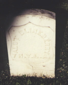 BLINEBERRY, ALB'T - Gunnison County, Colorado | ALB'T BLINEBERRY - Colorado Gravestone Photos