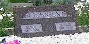 JOHNSON, GEORGE - Gunnison County, Colorado | GEORGE JOHNSON - Colorado Gravestone Photos