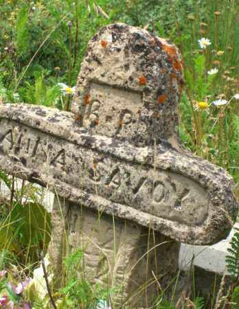SAVOY, ANNA - Gunnison County, Colorado | ANNA SAVOY - Colorado Gravestone Photos