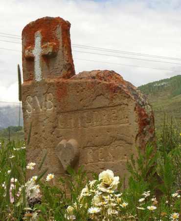 SAVOY, S. V. B. - Gunnison County, Colorado   S. V. B. SAVOY - Colorado Gravestone Photos