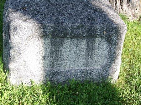 BOTSFORD SHORES, LUCINDA - Gunnison County, Colorado | LUCINDA BOTSFORD SHORES - Colorado Gravestone Photos