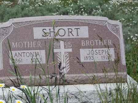 SHORT, ANTONIO - Gunnison County, Colorado | ANTONIO SHORT - Colorado Gravestone Photos