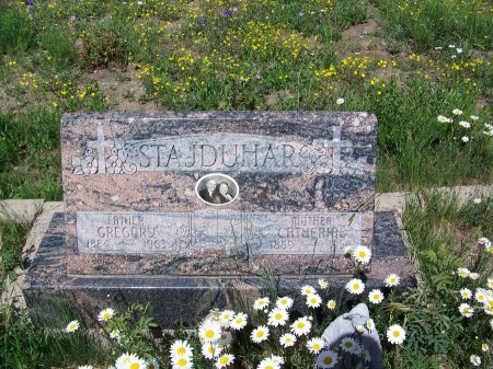 STAJDUHAR, GREGORY - Gunnison County, Colorado | GREGORY STAJDUHAR - Colorado Gravestone Photos