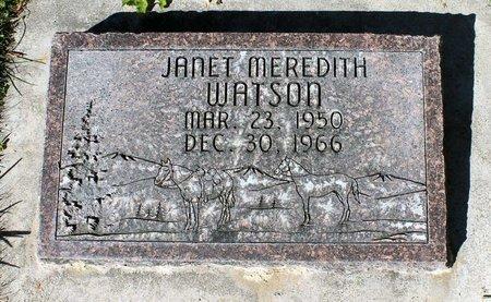 WATSON, JANET MEREDITH - Gunnison County, Colorado | JANET MEREDITH WATSON - Colorado Gravestone Photos