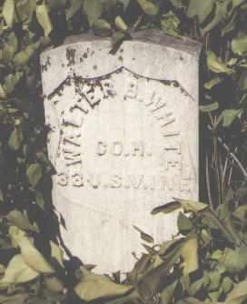WHITE, WALTER B. - Gunnison County, Colorado | WALTER B. WHITE - Colorado Gravestone Photos