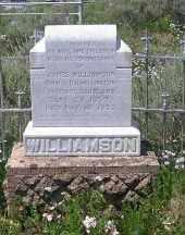 WILLIAMSON, JAMES - Gunnison County, Colorado | JAMES WILLIAMSON - Colorado Gravestone Photos