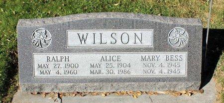 WILSON, ALICE - Gunnison County, Colorado | ALICE WILSON - Colorado Gravestone Photos