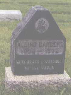 BARBERO, ALBINO - Jefferson County, Colorado | ALBINO BARBERO - Colorado Gravestone Photos
