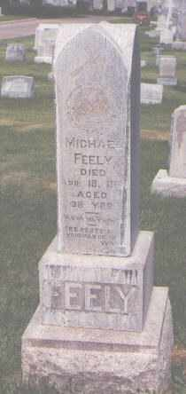 FEELY, MICHAEL - Jefferson County, Colorado | MICHAEL FEELY - Colorado Gravestone Photos