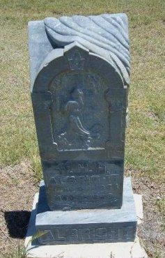 ALBRIGHT, W H H - Kiowa County, Colorado | W H H ALBRIGHT - Colorado Gravestone Photos