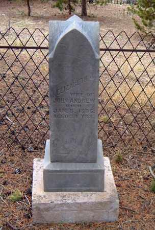 ANDREW, ELIZABETH J. - Lake County, Colorado | ELIZABETH J. ANDREW - Colorado Gravestone Photos