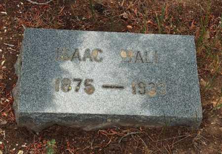 BALL, ISAAC - Lake County, Colorado | ISAAC BALL - Colorado Gravestone Photos