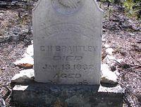 "BRANTLEY, NANCY ""NANNIE"" - Lake County, Colorado | NANCY ""NANNIE"" BRANTLEY - Colorado Gravestone Photos"
