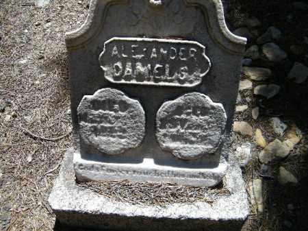 DANIELS, ALEXANDER - Lake County, Colorado | ALEXANDER DANIELS - Colorado Gravestone Photos