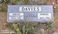 DAVIES, SAMUEL - Lake County, Colorado   SAMUEL DAVIES - Colorado Gravestone Photos