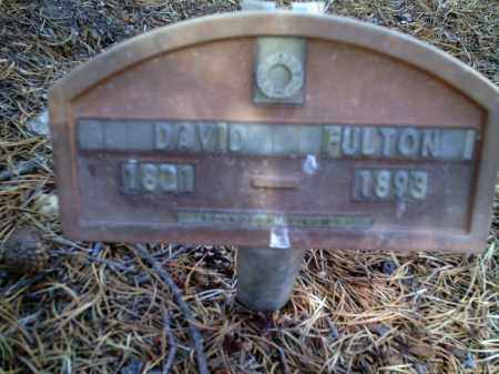 FULTON, DAVID - Lake County, Colorado | DAVID FULTON - Colorado Gravestone Photos
