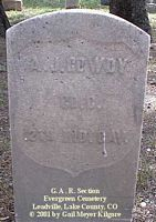 GOWDY, A. J. - Lake County, Colorado | A. J. GOWDY - Colorado Gravestone Photos