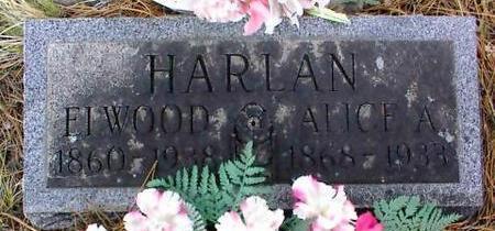 HARLAN, ALICE A. - Lake County, Colorado | ALICE A. HARLAN - Colorado Gravestone Photos
