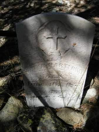 HARTFORD, PETER - Lake County, Colorado   PETER HARTFORD - Colorado Gravestone Photos