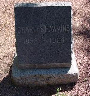 HAWKINS, CHARLES JOHN - Lake County, Colorado | CHARLES JOHN HAWKINS - Colorado Gravestone Photos