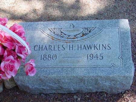 HAWKINS, CHARLES HERMAN - Lake County, Colorado | CHARLES HERMAN HAWKINS - Colorado Gravestone Photos