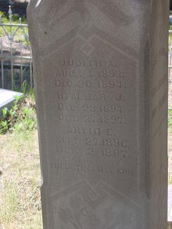 HAWKINS, JUDITH A - Lake County, Colorado | JUDITH A HAWKINS - Colorado Gravestone Photos