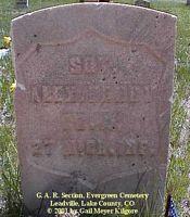 HENRY, ALEX - Lake County, Colorado | ALEX HENRY - Colorado Gravestone Photos