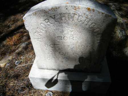 HITCHCOCK, AMORY - Lake County, Colorado | AMORY HITCHCOCK - Colorado Gravestone Photos