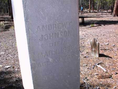 JOHNSON, ANDREW G. - Lake County, Colorado   ANDREW G. JOHNSON - Colorado Gravestone Photos